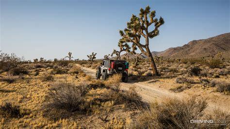 jeep tree berdoo trail review drivingline