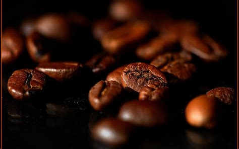 coffee brown wallpaper hd wallpaper coffee beans wallpapers