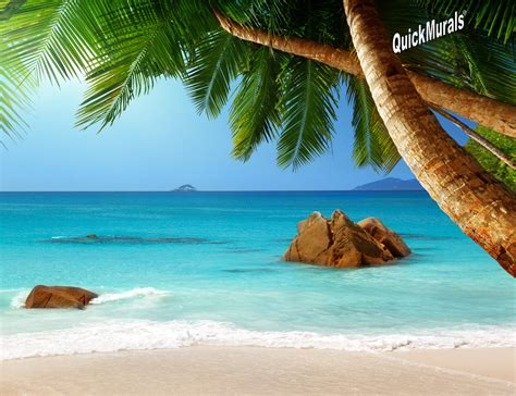 wall murals beach secluded beach peel amp stick wall mural