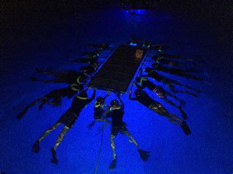 manta ray boat manta ray boat www topsimages