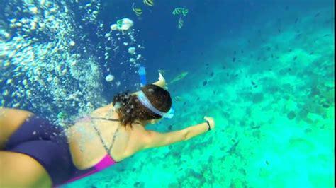 best snorkeling maldives snorkeling in the maldives