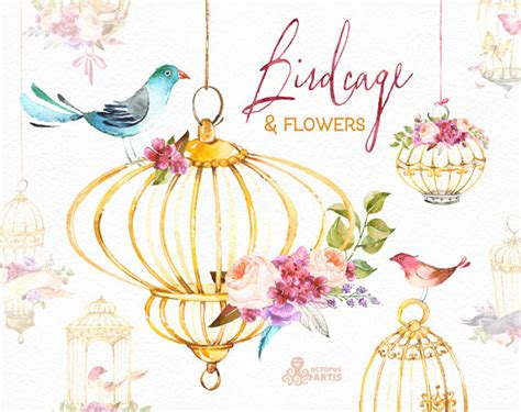 birdcage amp flowers watercolor floral clipart birds roses