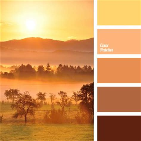 color palette  orange color palettes brown color