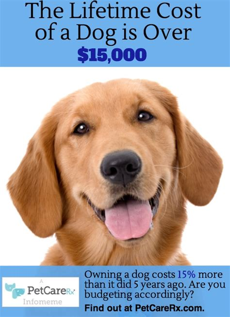 how much do cost for dogs how much does pet insurance cost breeds picture