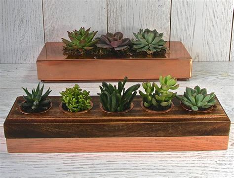 succulent holder copper and wood five succulent holder by london garden trading notonthehighstreet com