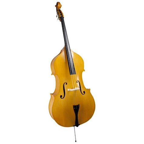 dog house bass palatino violin corner 3 4 upright bass