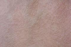 human skin stock image image of detail textured 37276783 skin human texture hair up stock image image of flat medicine 32715995
