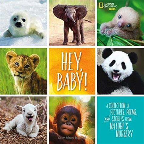 hey baby a collection of pictures poems and stories from nature s nursery national geographic books hey baby pictures poems and stories from nature s