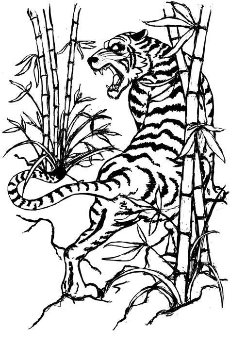 tiger tattoo outline designs ideas for tiger drawing
