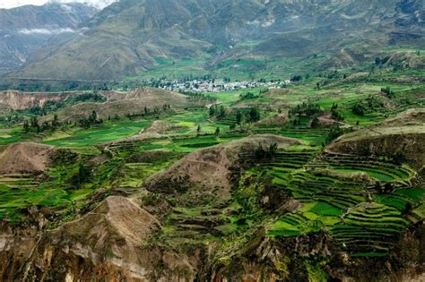 imagenes de valles naturales ca 241 243 n del colca ubicado en el valle del colca arequipa