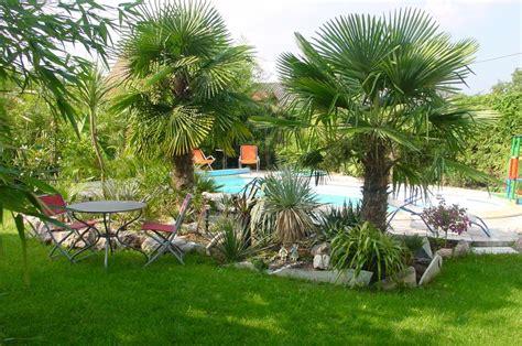 Im Garten by Winterharte Palmen Im Garten Pflanzen Pflanzenfreunde