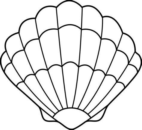 Shell Template