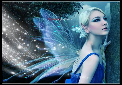 fairy night desktop background wallpaperscom