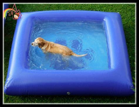 backyard dog pool ペット用プール 新商品 海外おもしろ情報