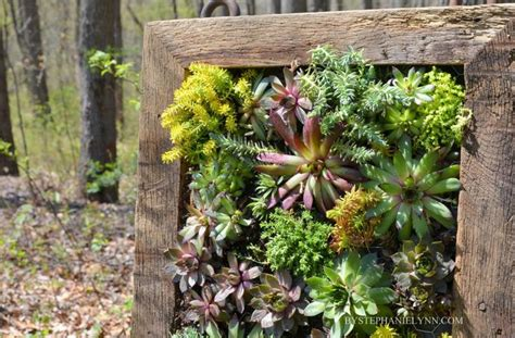 How To Make A Wooden Wheelbarrow Planter How To Make A Succulent Wall Garden