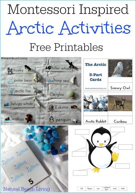montessori grammar printable montessori arctic activities polar regions free