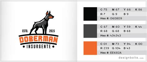 color combination for orange 10 best 3 color combinations for logo design with free