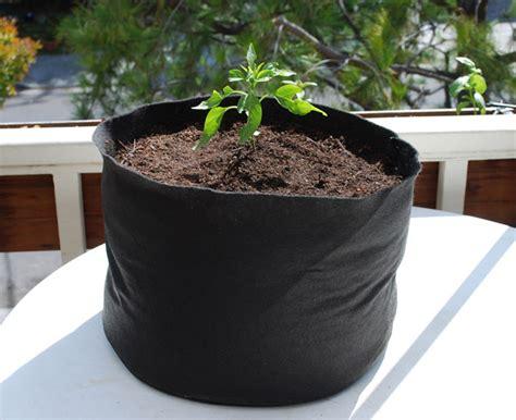 Organic Container Vegetable Gardening Fertilizing Container Vegetables Organic Soil Amendments