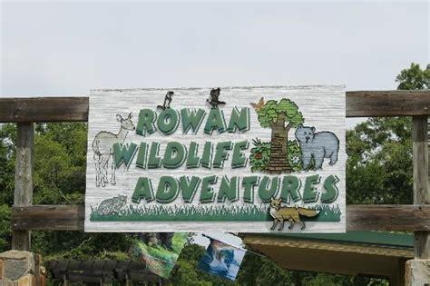 free nature center picture of dan nicholas park