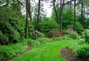 woodland mixed shrub border