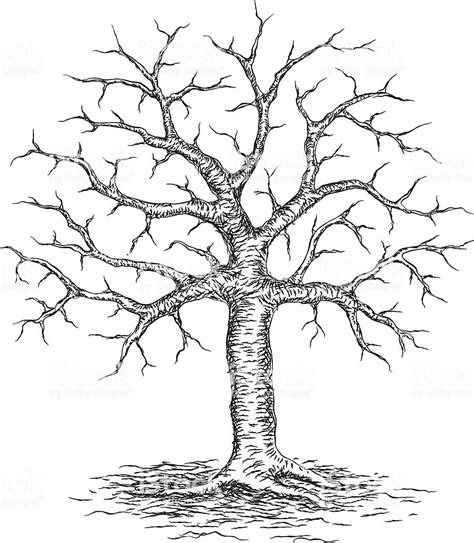 albero clipart albero inverno illustrazione 165620745 istock