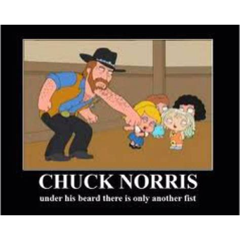 Chuck Meme - family guy anything pinterest awesome chuck norris and family guy