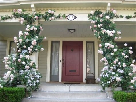 climbing plants for front of house flower bed designs should always include roses lots of
