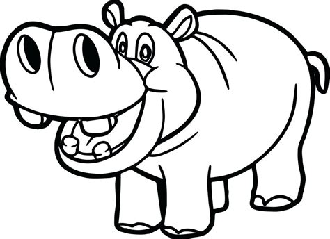 hippopotamus 27 animals printable coloring pages hippo coloring pages download free coloring printable