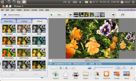 google images editor google picasa 3 0 beta review