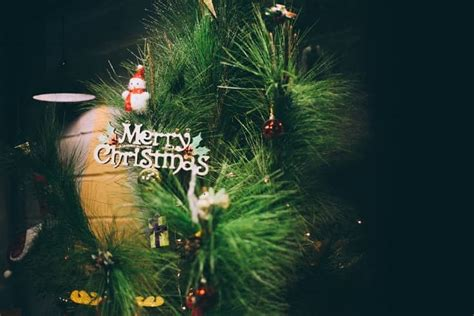 merry christmas images  christmas pictures happy xmas hd photo