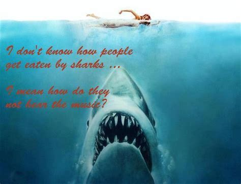 film quotes jaws funny jaws quotes quotesgram