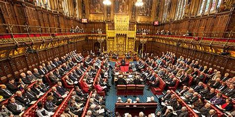 house of lords uk house of lords robert winston
