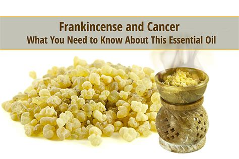Essential Frankincese Frankincense And Cancer What You Need To About This