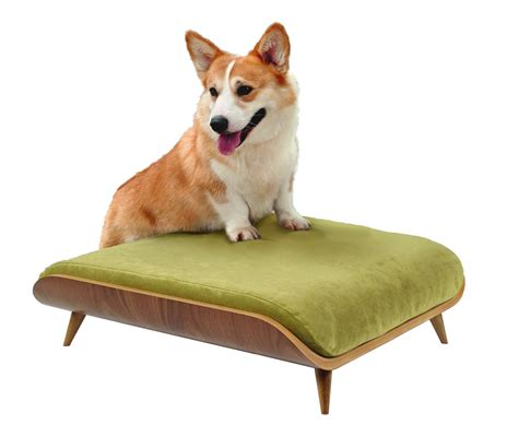 modern dog beds modern dog beds paul frank modern dog bed blue julius pet