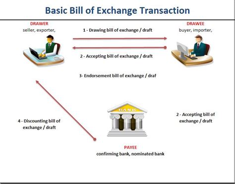 Process Letter Of Credit basic bill of exchange transaction graphic chart