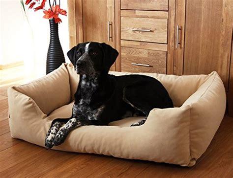xxxl dog bed knuffelwuff dreamline dog bed in sizes l xxxl in
