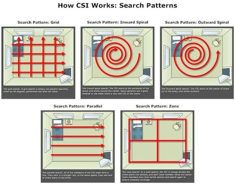 pattern lookup crime scene investigation search patterns exle