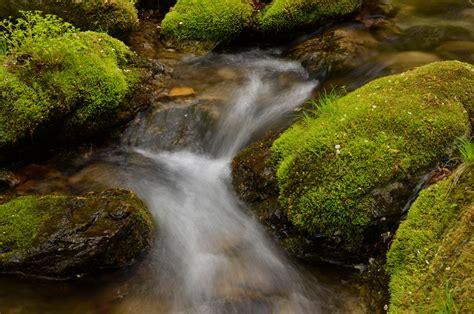Landscape Photography With Macro Lens Af S Dx Micro Nikkor 40mm F 2 8g