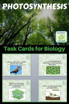 biological themes in film class 1000 ideas about photosynthesis activities on pinterest