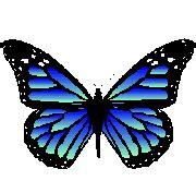 imagenes lindas gif mariposas im 225 genes animadas gifs y animaciones 161 100 gratis