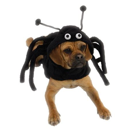 spider costume for dogs spider costume lovadog department store for dogs