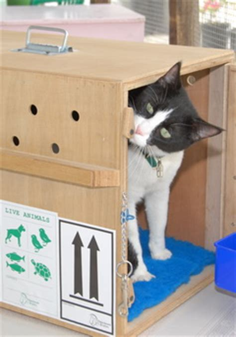 travel boxes  dogs cats   pets dkc