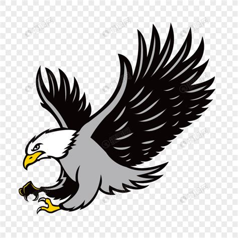 gambar lukisan burung helang cikimmcom
