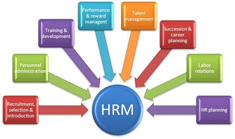 top 5 human resources skills human resource management