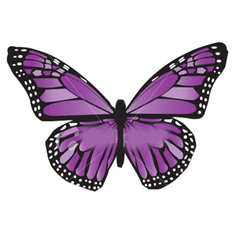 imagenes d mariposas animadas alas de mariposas moradas png by nicoleeditions12 on