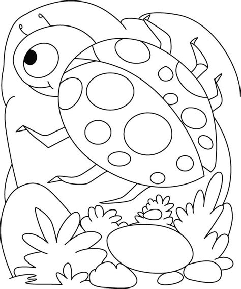 coloring pages of lady bird lady bird coloring pages page grig3 org