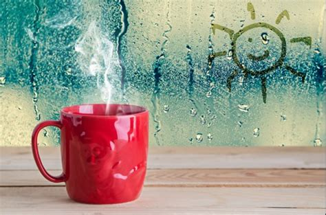 condensation on outside of house windows best ways to combat condensation on you windows