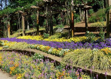 Line Gardens by 19 Landscape Design Nc State Extension Publications