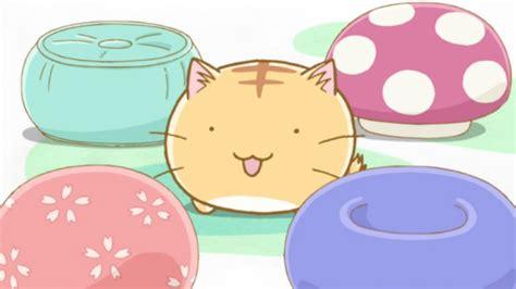 cat s eye anime news network dogalize il pet social network per il tuo e gatto