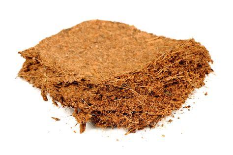 coco peat coco coir bricks
